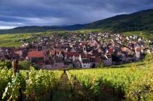 vignes et maisons à Riquewihr