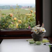 vue depuis la fenêtre du gîte le mandlé à Riquewihr