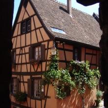 Domaine viticole Engel à Riquewihr